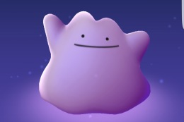 Ditto is Here!